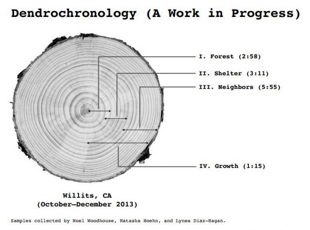 Dendrochronology 1