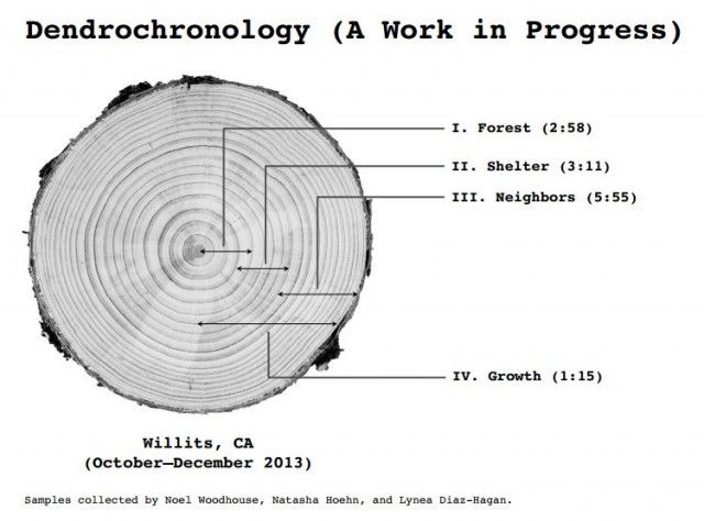 Dendrochronology 1