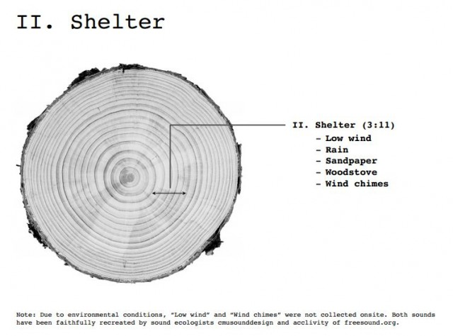 Dendrochronology 3