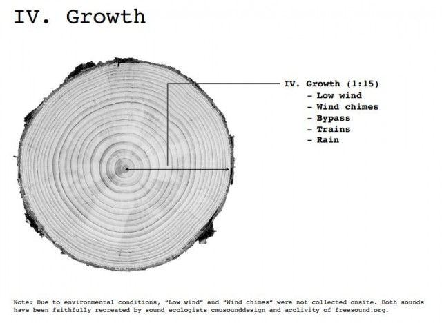 Dendrochronology5