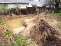 material from pond and some compost added